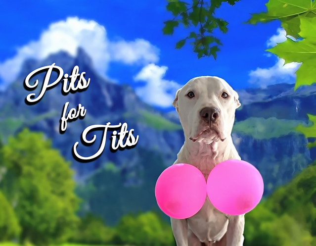 Pits for Tits