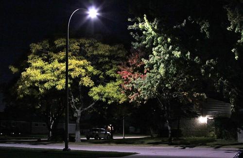 autumn shadow streetlight fallcolor streetlamp nightlight suburb nightscene jannagal jannagalski suburbansubdivision