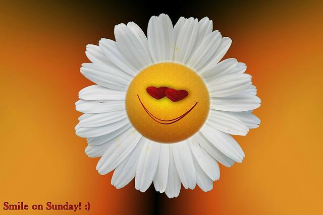 Smile on Sunday! :)