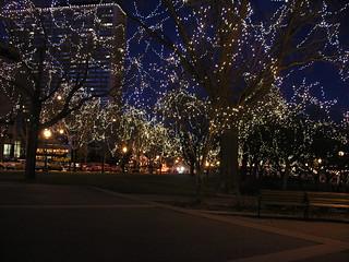 St Paul winter lights
