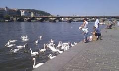 lovely day in Praha