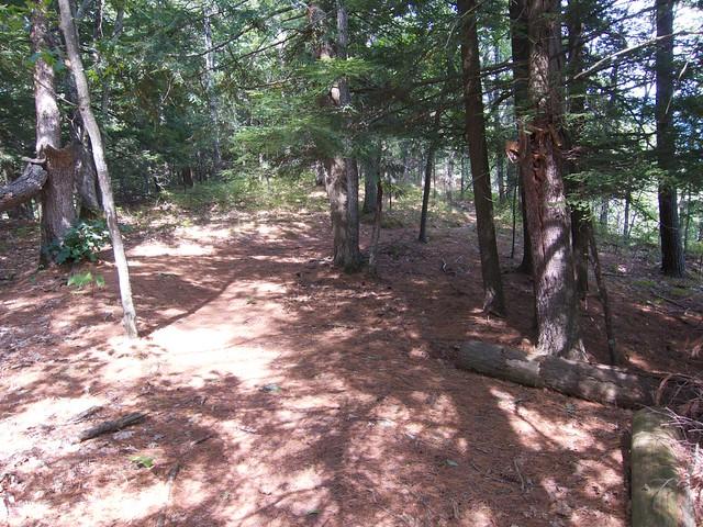 2:39:56 (97%): vermont hiking palisades fairlee