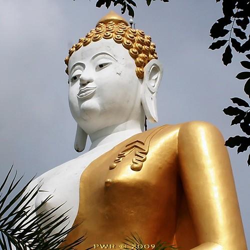 IMG_0529 @ Wat Doi Kham. | by ol'pete