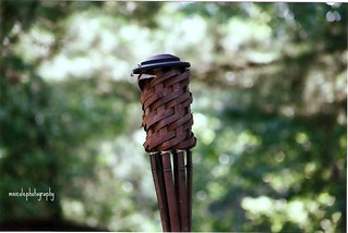 tiki torch with no flame and lots of bokeh :) | by mariahnmatarazzo