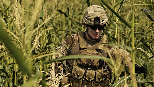 Soldiers of the corn [Image 8 of 22] | by DVIDSHUB