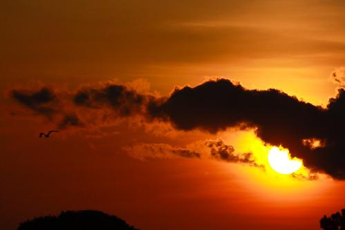 sun sunrise florida panamacitybeach standrewsstatepark