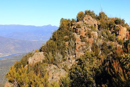 derwentvalley australia bushwalking tasmania mountdromedary