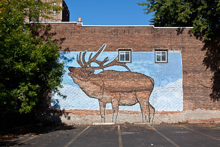 Living Walls (The Elk) - Albany, NY - 2011, Sep - 11.jpg | by sebastien.barre
