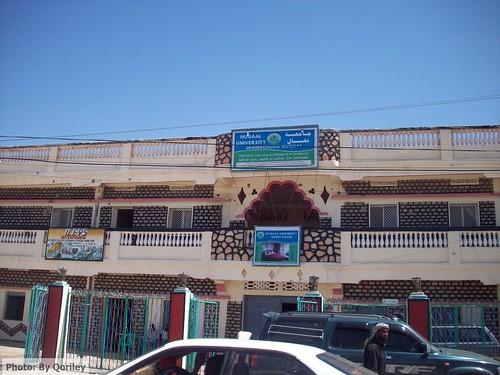 las university land somalia somaliland derwish sool puntland nugaal cayn anod sanaag garowe soomaaliya laascaanood jaamacada buuhoodle ceergaabo