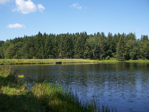 forest pond state dam mallet andyarthur