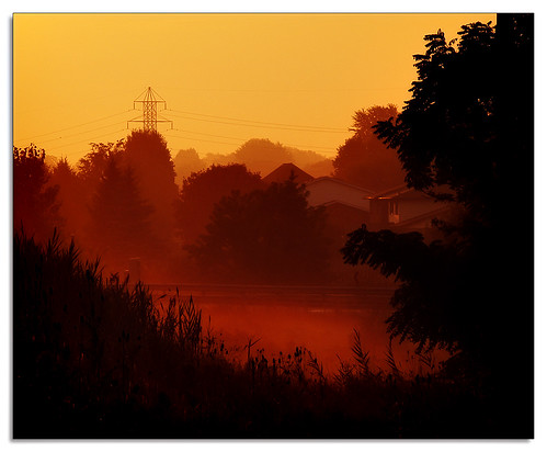 morning trees sky orange hot silhouette sunrise gold haze humid