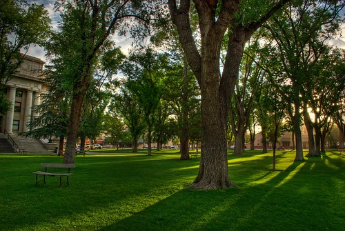 trees arizona grass sunrise photography michael photo photos pics az pic wilson courthouse hdr prescott michaelwilson michaelwilsoncom