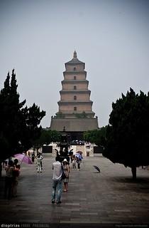 gran pagoda de la oca salvaje