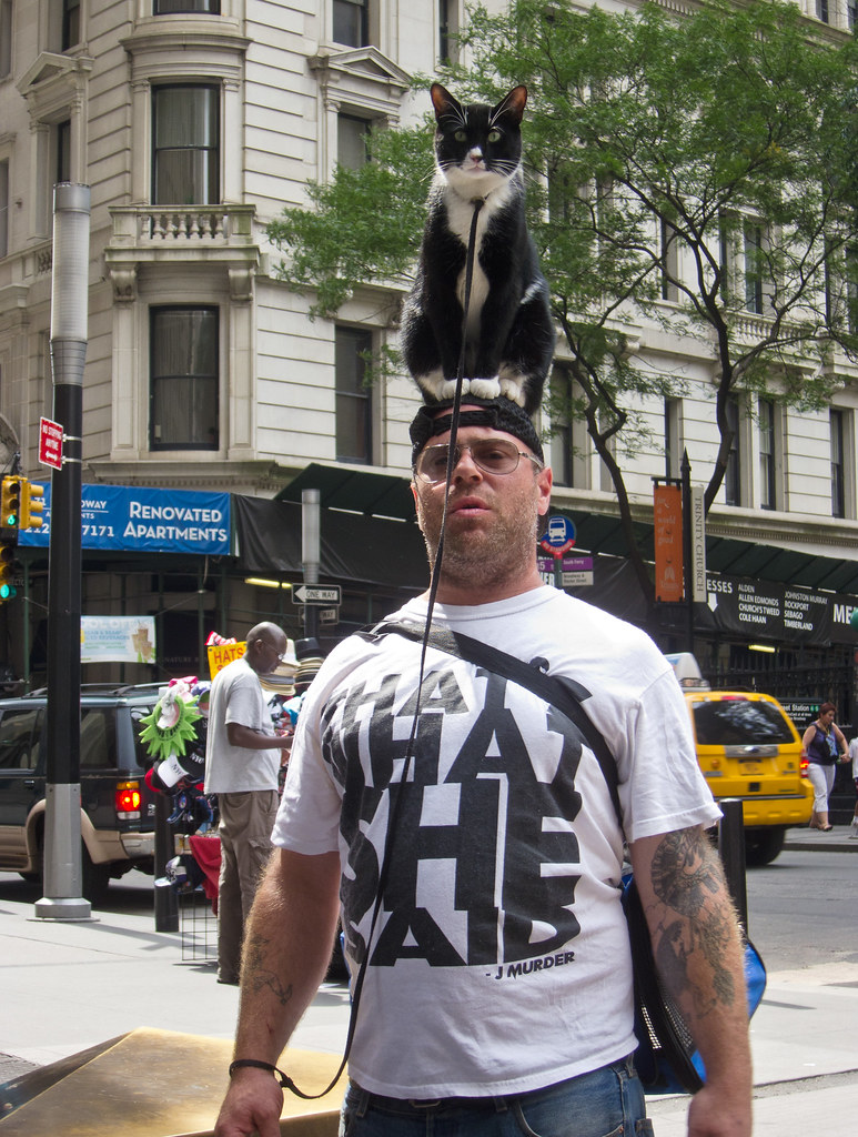 Man With Cat Sitting on Top of His Head
