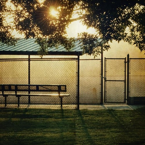 morning tree dusty leaves sunrise canon fence bench square chainlinkfence dust streaming textured baseballdiamond artlibres texturesquared t1i