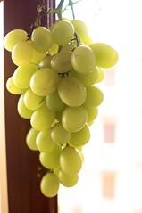 White Grapes/Red Wine