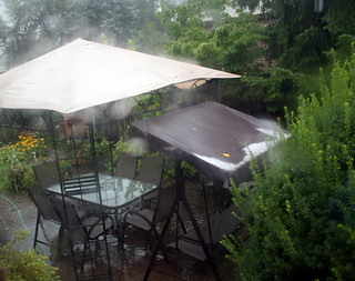 Heavy rains and hailstones just after lunch | by Hari B
