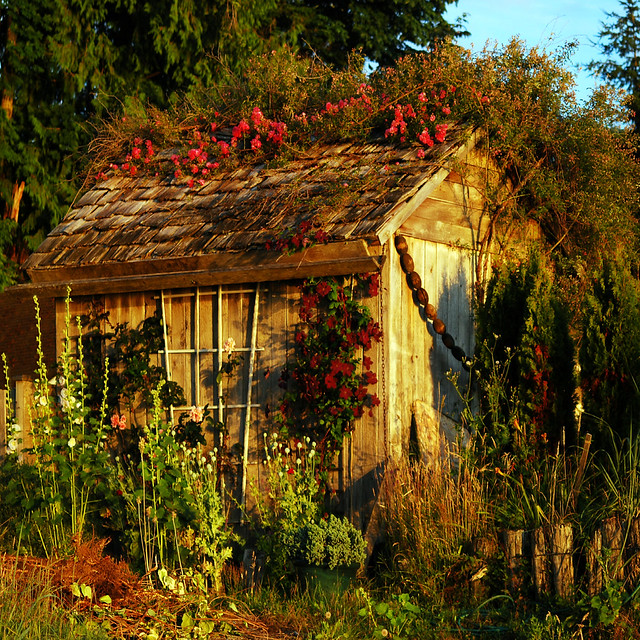 garden shed . . .