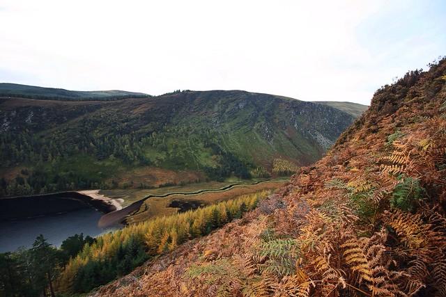 Autumn on the mountainside