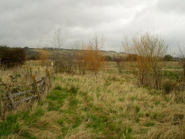 Footpath near Palmarsh