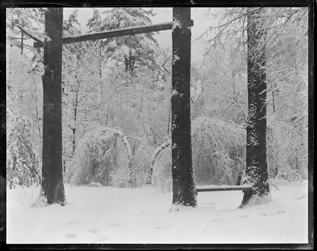 Snow scene in Abington