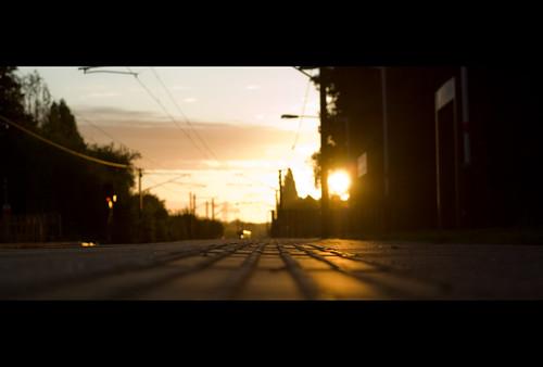 sunrise earlymorning commute daybreak maxheadroom artofnoise letchworh paranoimia anotherpartialsuccess comesweetslumberenshroudmeinthypurplecloak doesntevenrhyme asleepontheplatform