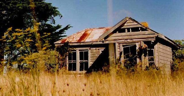 Awhitu Peninsula: old relic