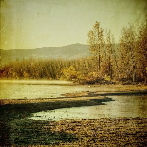 morning autumn trees lake fall canon vintage square sand jetty grunge shore aged chatfield textured texturesquared t1i