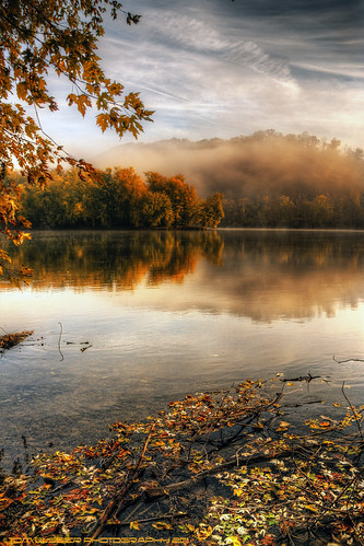 usa tree water fog clouds forest sunrise reflections river landscape virginia nikon fallcolor fallcolors potomacriver loudouncounty tomlussier