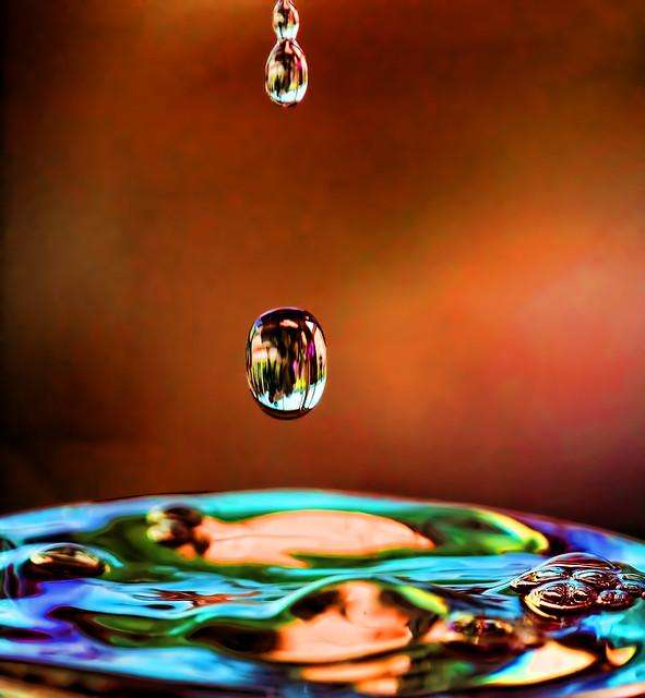 Gouttes d'eau DSC01615_DxO
