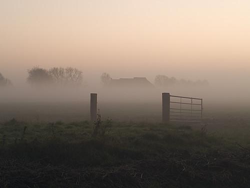 sunset mist green fog fence wow farm winsum oldenzijl vividstriking ringexcellence dblringexcellence tplringexcellence eltringexcellence ruby20 rubyfrontpage wowl2 wowl3