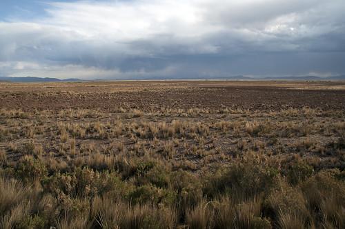de bolivia provincia paesaggi oruro caracollo