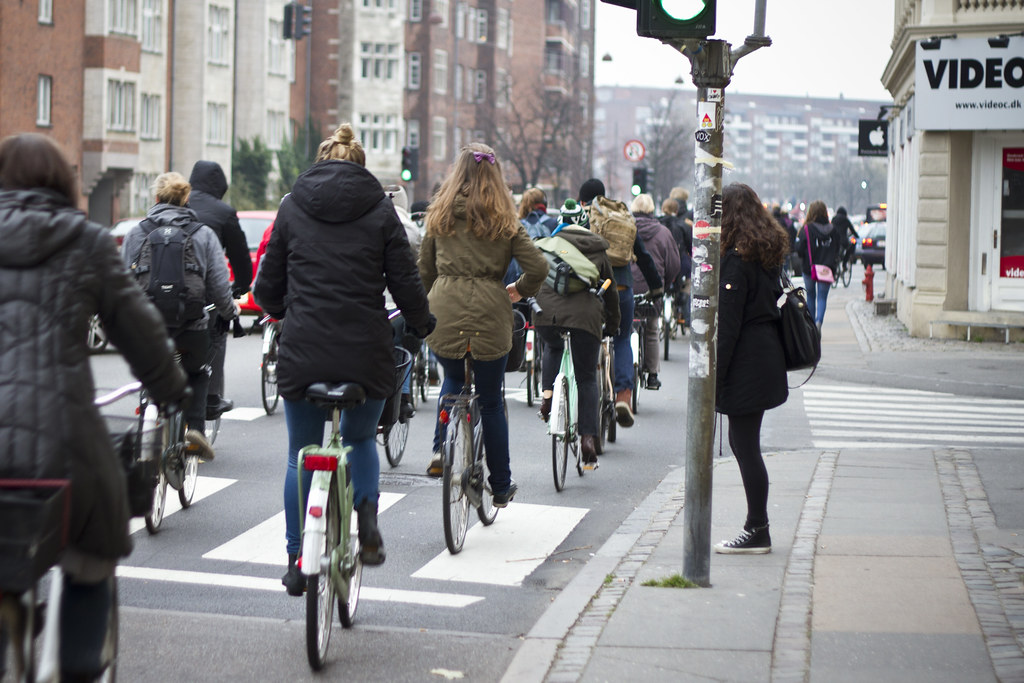 Bicycle Rush Hour Copenhagen - November