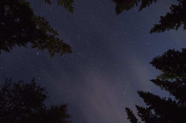Alberta nights