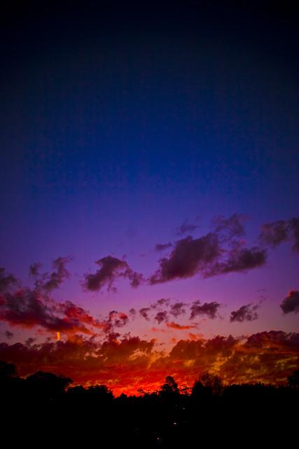 Woodford Sky