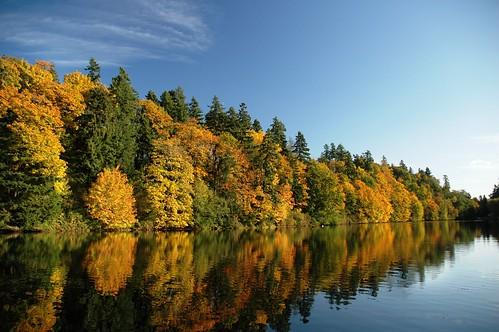 autumn color fall nikond70 washingtonstate