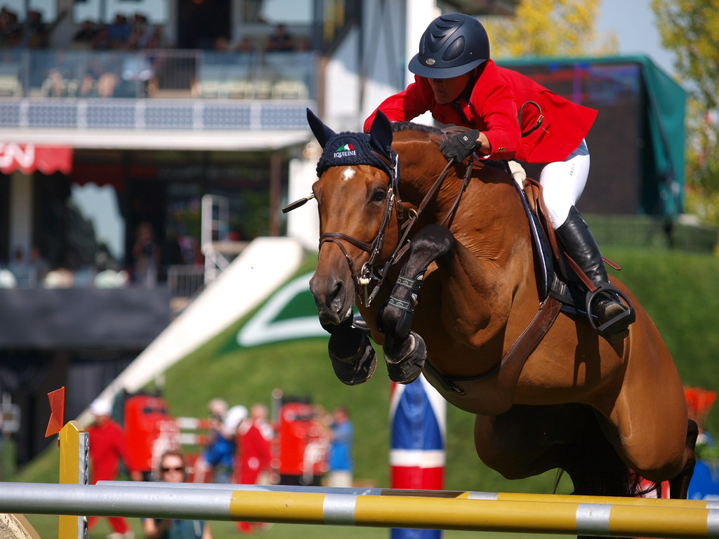 Horse Show Jumping at Spruce Meadows