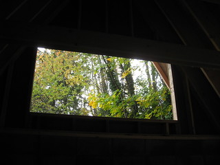 Window to Green | by parker yo!