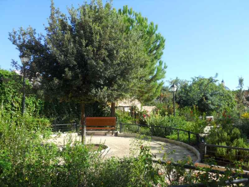 Jardín mediterráneo en otoño