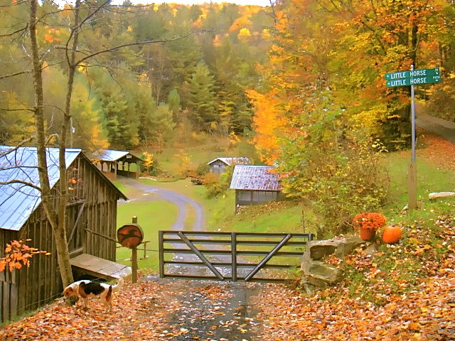 Little Horse Creek Autumn entrance
