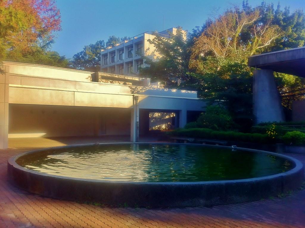 Tokyo Keizai University: A Pond
