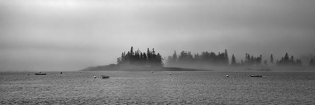 Foggy Morning Seal Harbor