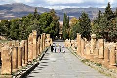 Timgad - Algeria