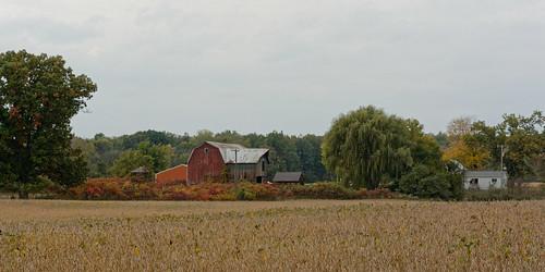 sky cloud tree 2015 fall building 2965 october soybeans barn fields v2 nikon nikon1v2 1v2