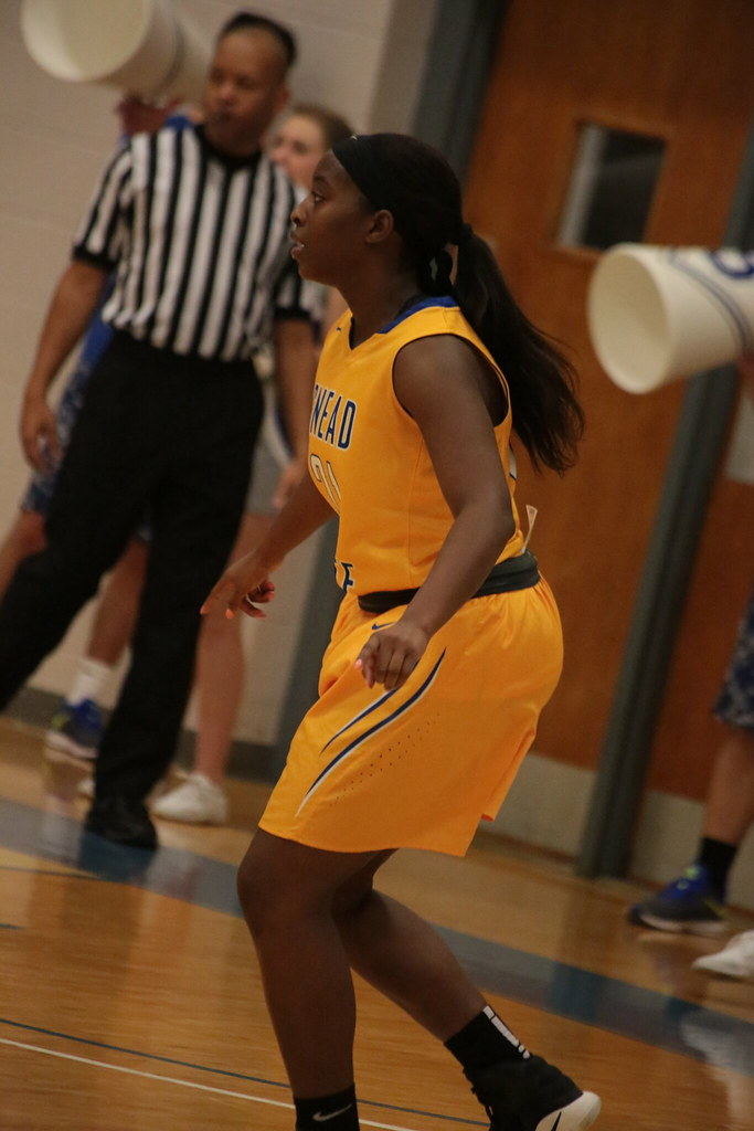 16-17 Sscc Womens Basketball  Snead State Community College  Flickr