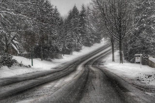 Snowy Morning Drive (Explore)