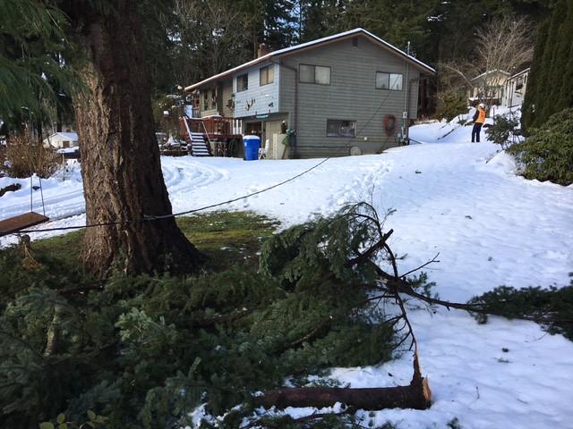 Damage in Edgewood