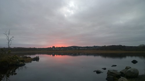 sunset scenic lake ballyquirke ireland lumia1020 cameraphone landscape tree reflection twilight glow pink sky