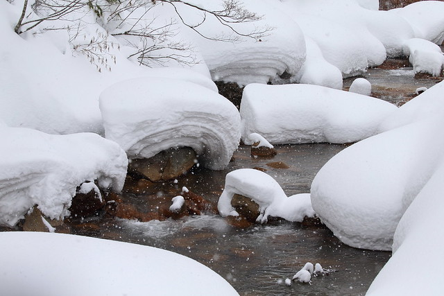 Stream in the snowy land