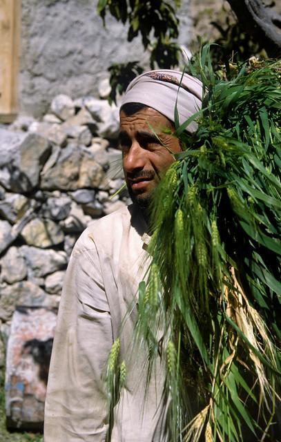Villager at Wakhan Ghubrah Bowl Oman